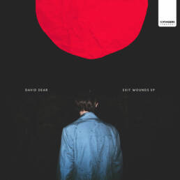 David Dear - Exit Wounds EP